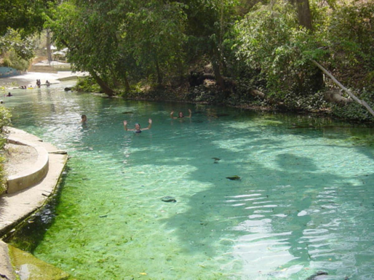 Beautiful Scene of Yankari , Bauchi State, Nigeria