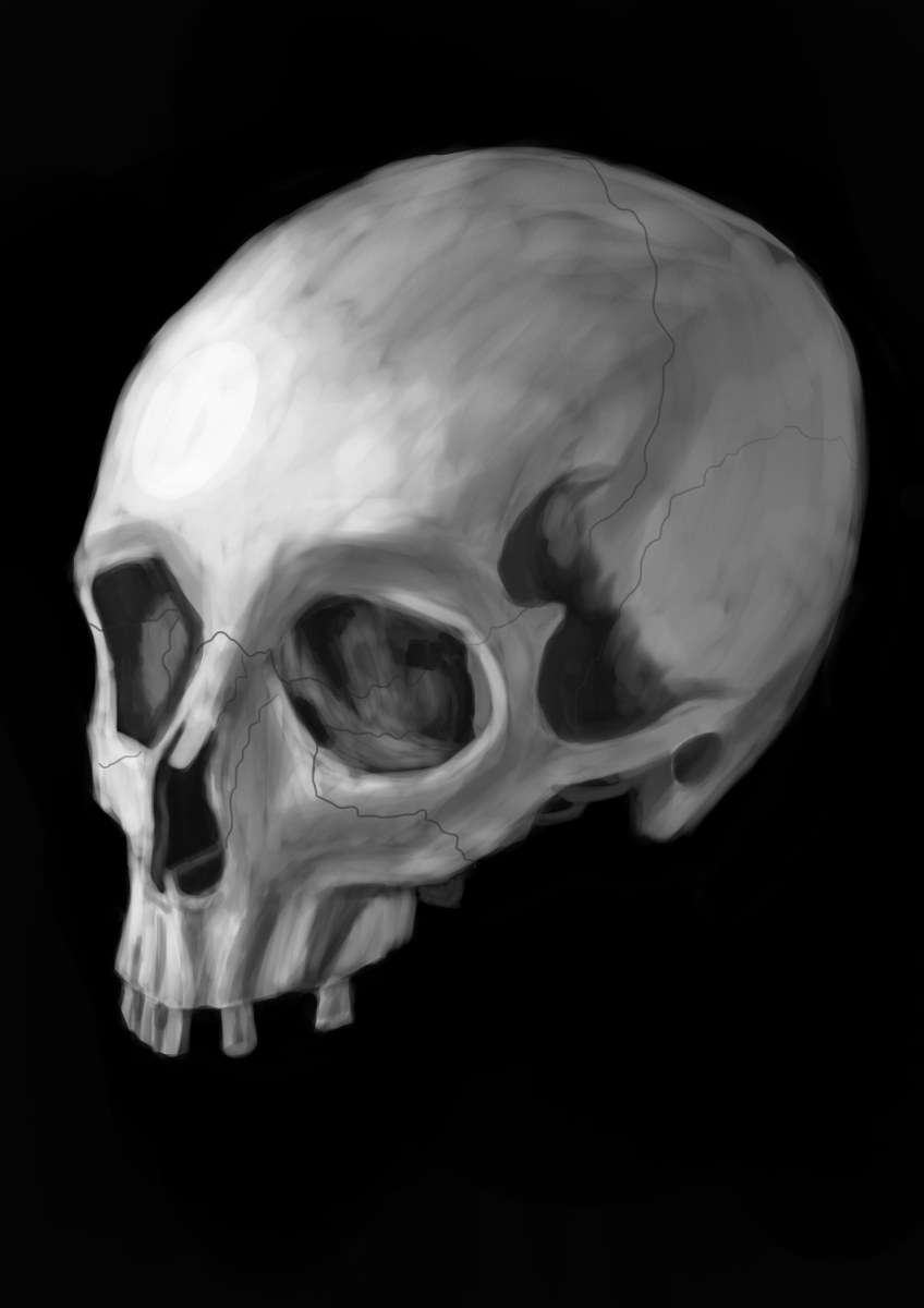 My Skull study which is the piece that I was most proud of and showed the most improvement.
