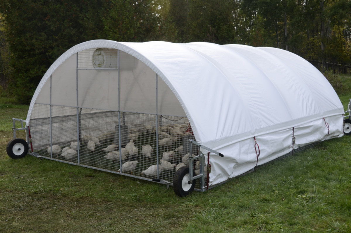 This mobile chicken tractor can be pulled into a different patch of grass every day allowing for old pasture to regrow and new pasture to be eaten.