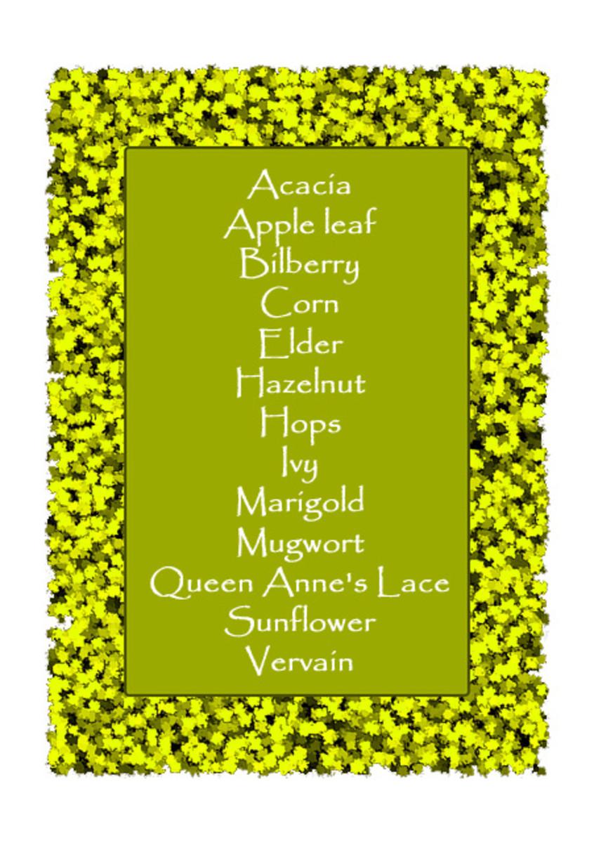 Herbs for Lughnasadh magic