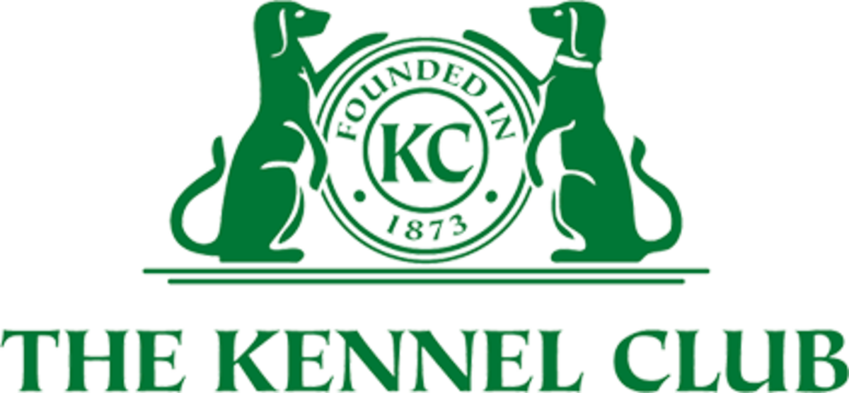 How To Register Your Dog In Kennel Club Of India (KCI)