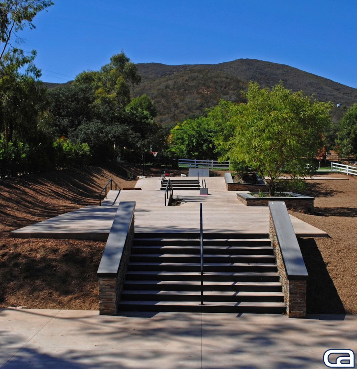 Chris Cole Backyard Skatepark