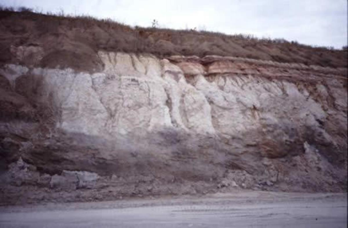 An example of Tertiary deposits. The period lasted from 66 million to 2.58 million years ago.