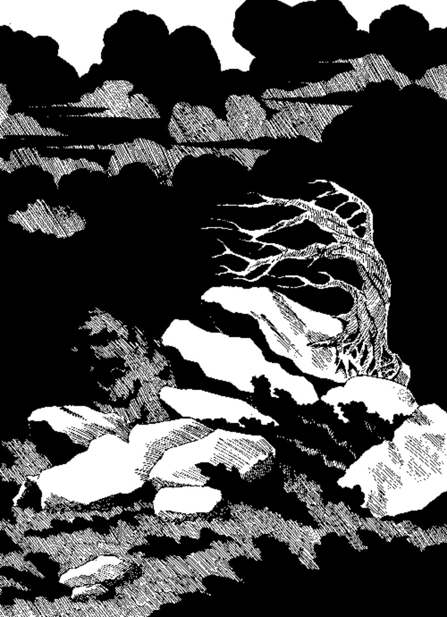 The horizon black with storm clouds and the violent winds are chilling to the bone. A horribly bent skeleton of a tree clings to the rocks.