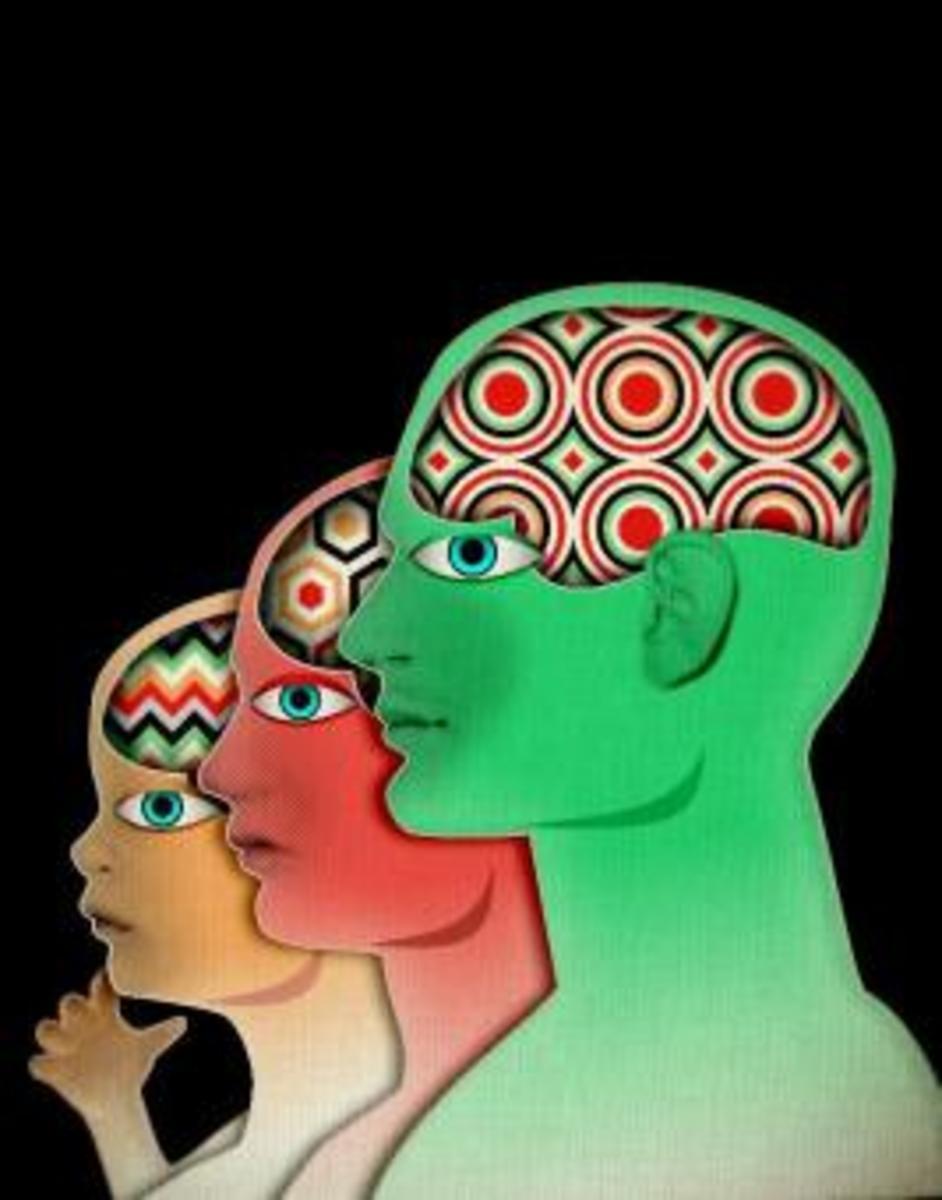 EPIGENETICS: non-Genetic Inheritance ?