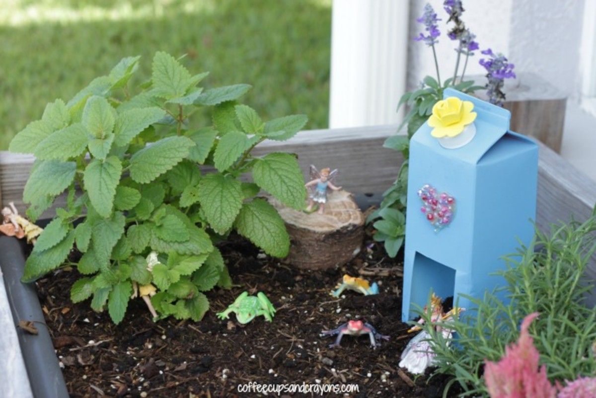 Here's a super simple way to create a magical Fairy Garden using a juice or milk carton as the house.  It's brilliant.