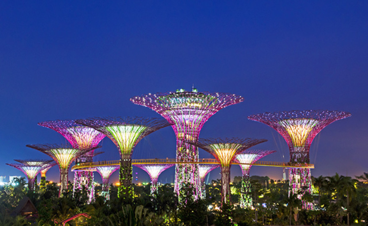 The iconic Super Trees of the world famous Gardens by the Bay.