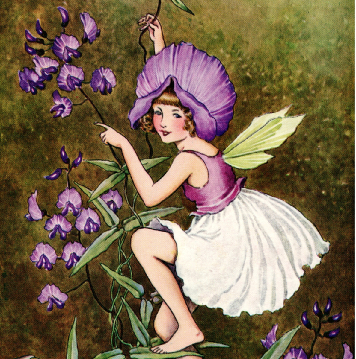 """Here we show a portion of """"Sarsaparilla"""" - it is from Ida Rentoul Outhwaite's suite published in """"A Bunch of Wild Flowers"""" (1933)."""
