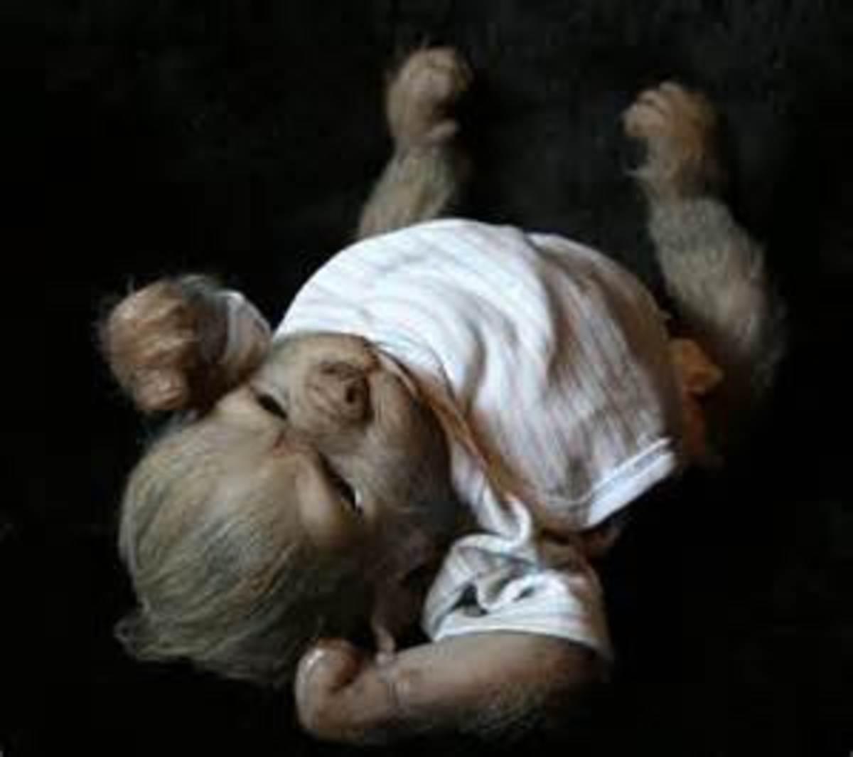 An baby werewolf