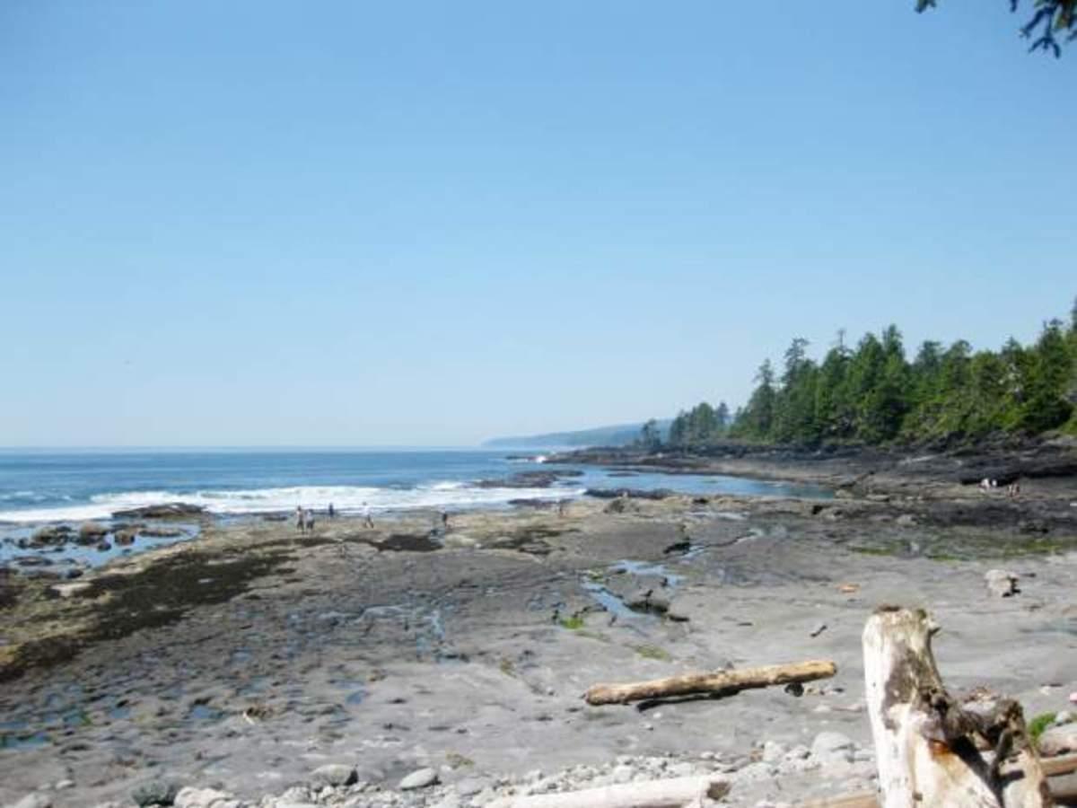 Beach where a hiker made a gruesome find