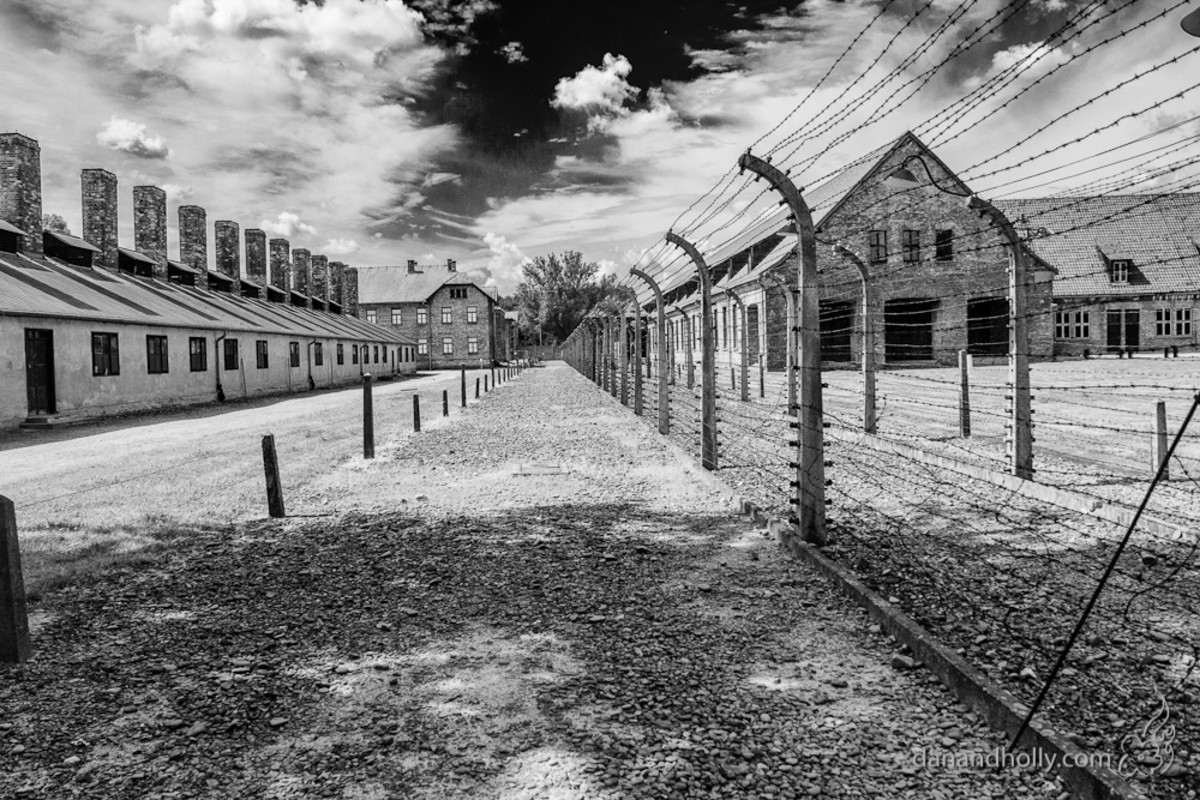 Auschwitz by Dan Thompson