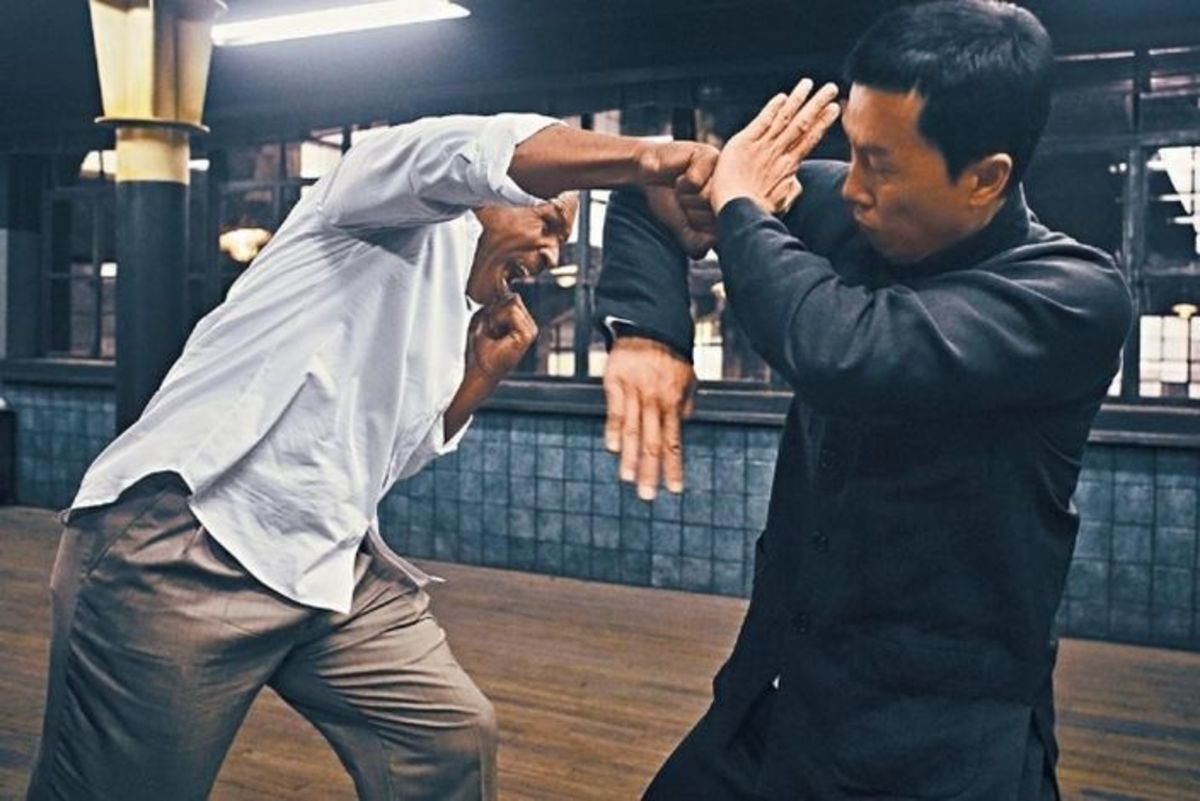 One of the best fight scenes I have seen, the fight with Donnie Yen and Mike Tyson balances out the strengths of both styles.