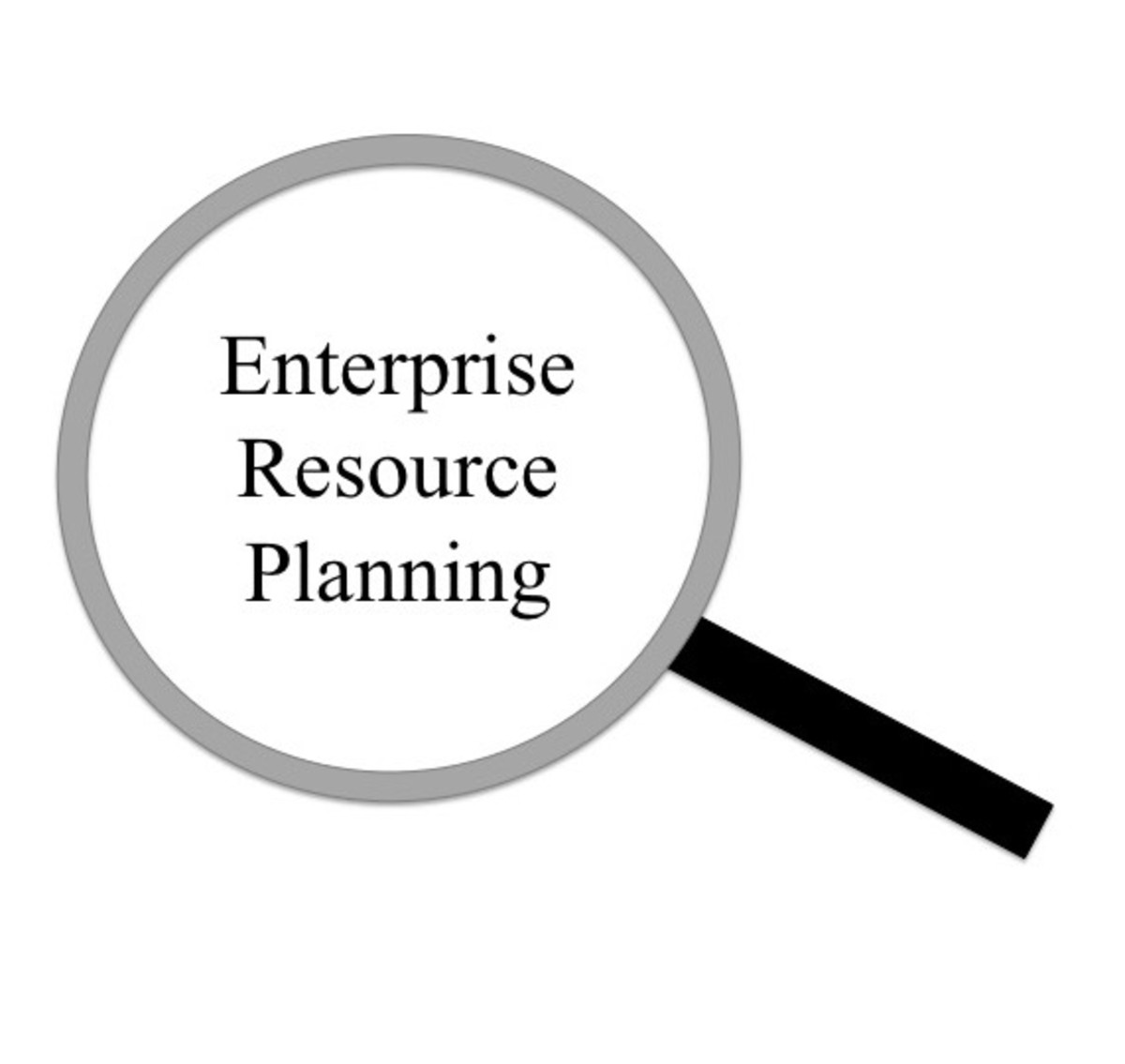 Enterprise Resource Planning (ERP) and Fortune 500 Companies