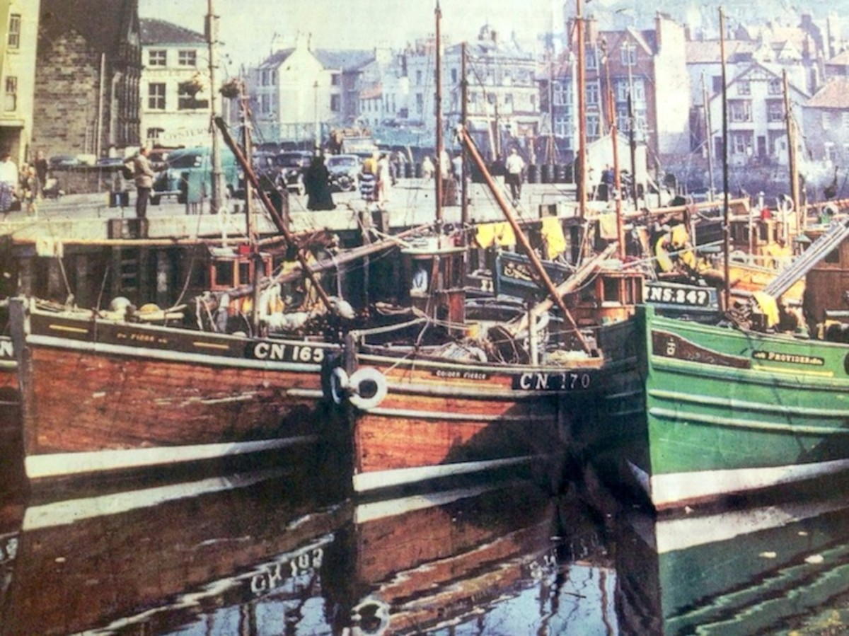 Whitby 1950s. In the 19th Century the harbour filled with herring boats from Scotland. Whitby trawlers now range out ihto the Atlantic for their catches. Inshore fishing vessels bring in coastal catches and timber vessels still come from the Baltic