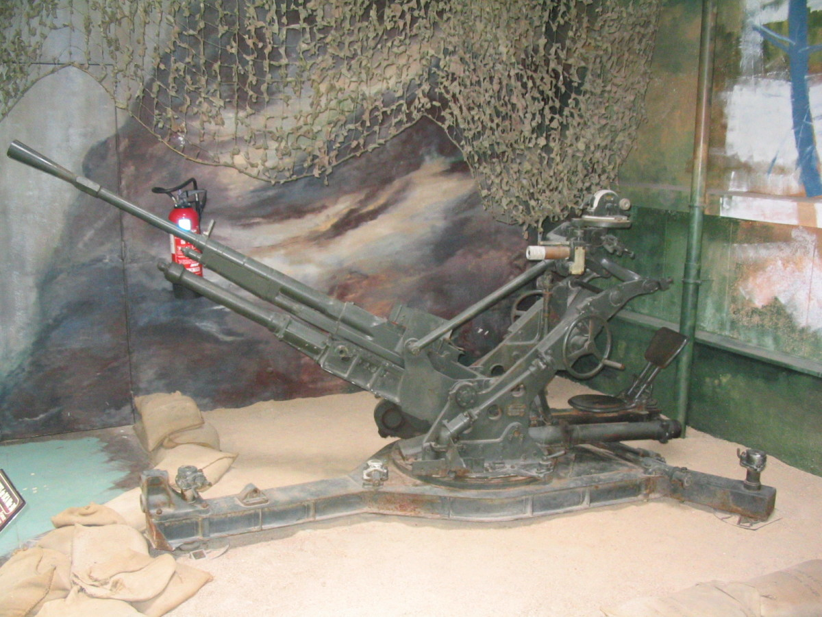 The French had far too few anti-aircraft guns defending their front and their airfields, and much of what they had were 75mm guns that were not useful enough against strafing aircraft.