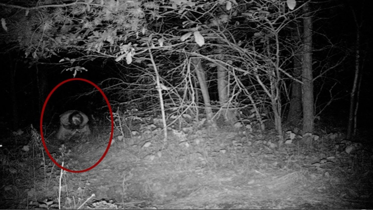 "UNEXPLAINED Real Scary Demon Attacks Guy Going to the Toilet ""Disturbing Footage"" FACELESS EVP"