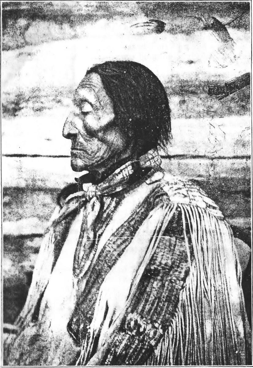 native-response-to-european-settlement-in-america