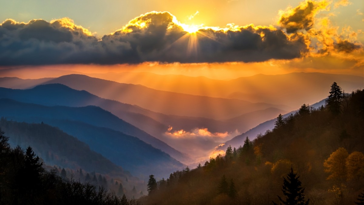 Great Smokey Mountain National Park Artist in Residence Program