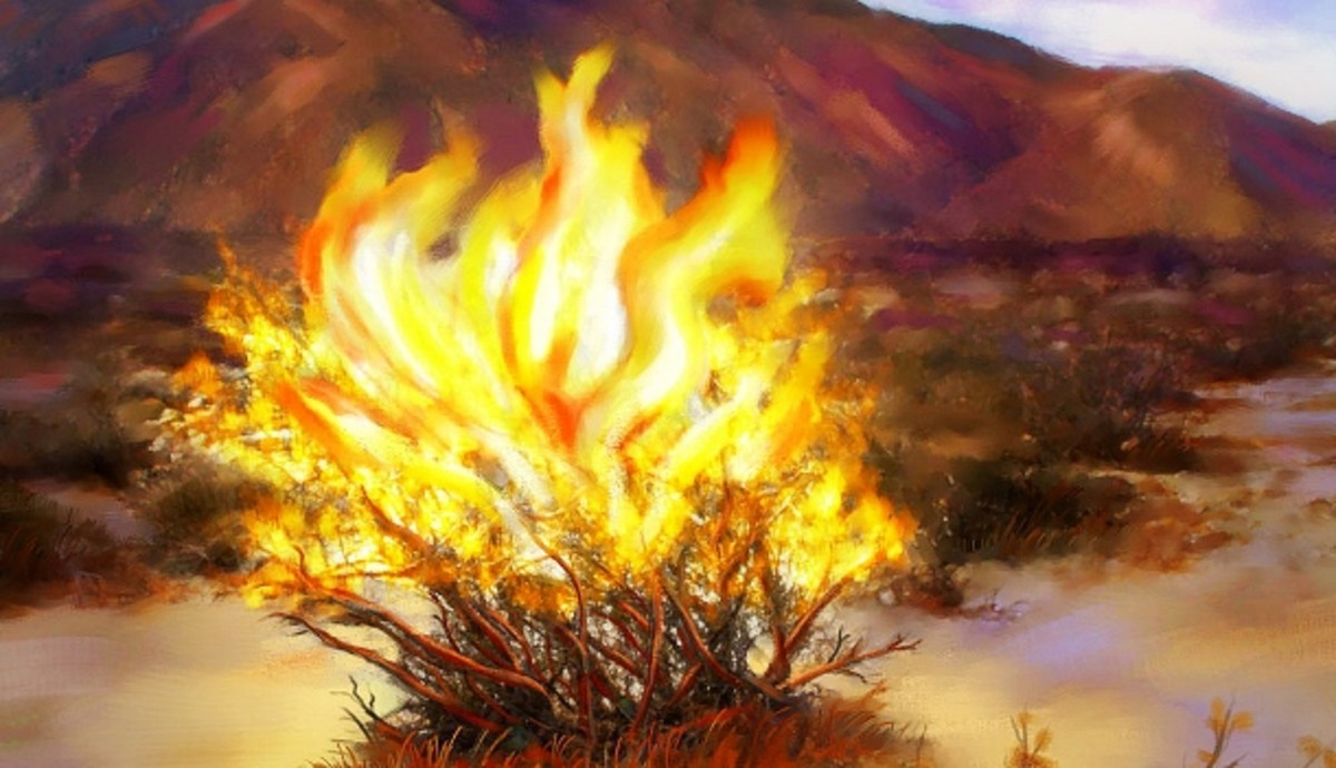 four-lessons-from-the-burning-bush