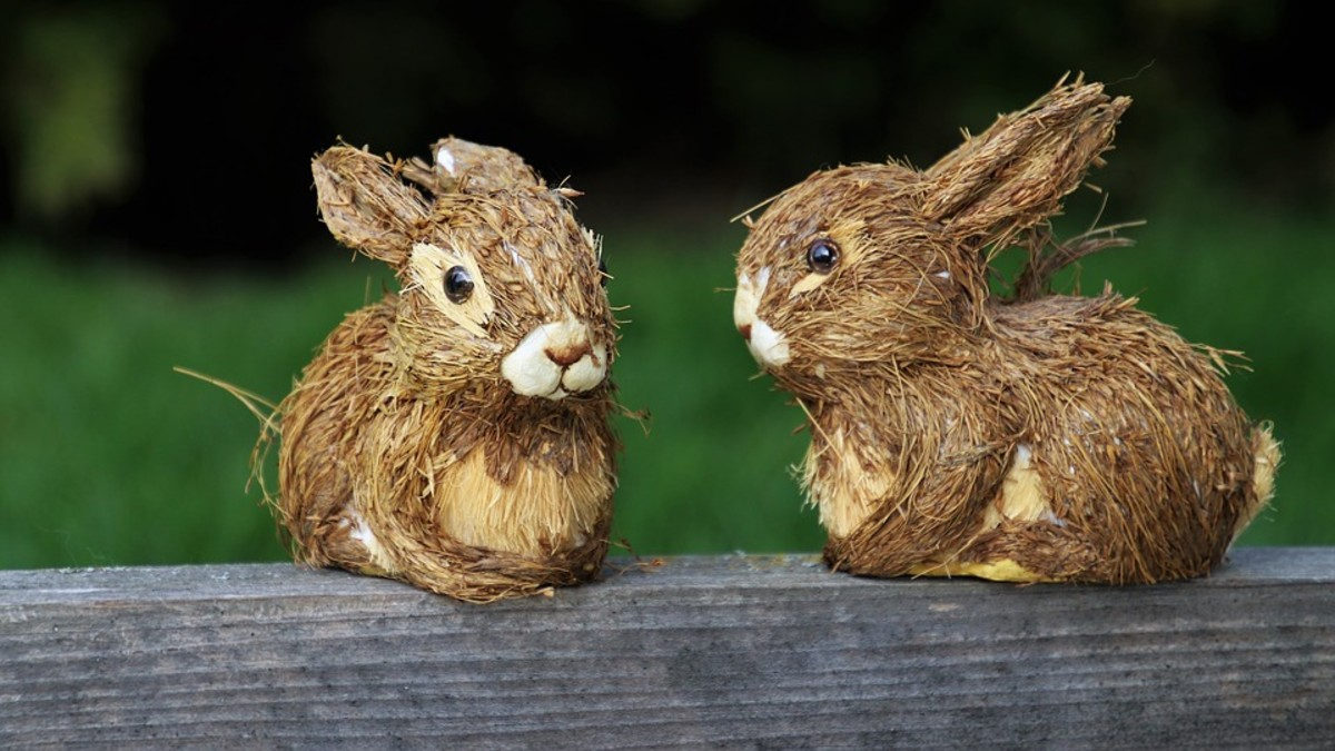 These coconut rabbits are a great example of unique garden decorations.