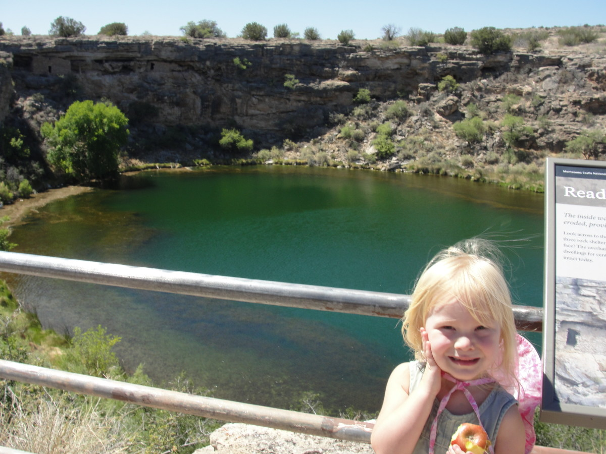 though I was more fascinated by Montezuma Well, which is home to 5 small creatures (leech, diatom, water scorpion, snail, & shrimp) found nowhere else in the world.