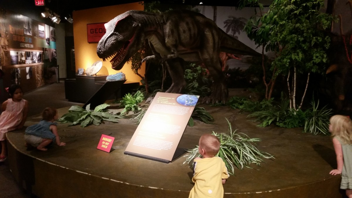 At the Pink Palace Museum, the older kids enjoyed the fossils, minerals, & gemstones while the younger ones loved the animated t-rex. The museum also has a great history section & we enjoyed getting to hear all about some of the Civil War artifacts.