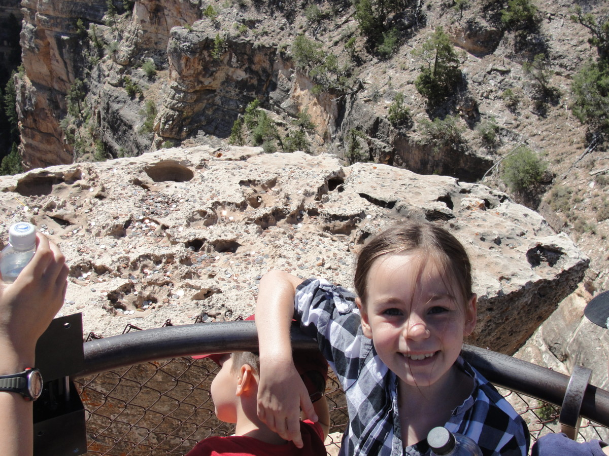 We spent most of the day at the Grand Canyon, though in the eyes of most of my children, the majestic sites of the canyon didn't compare with...