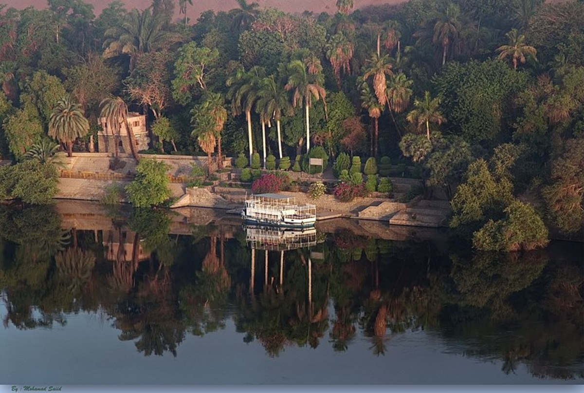 El Nabatat (Plant) Island Is One of the Most Important Islands of the Nile River
