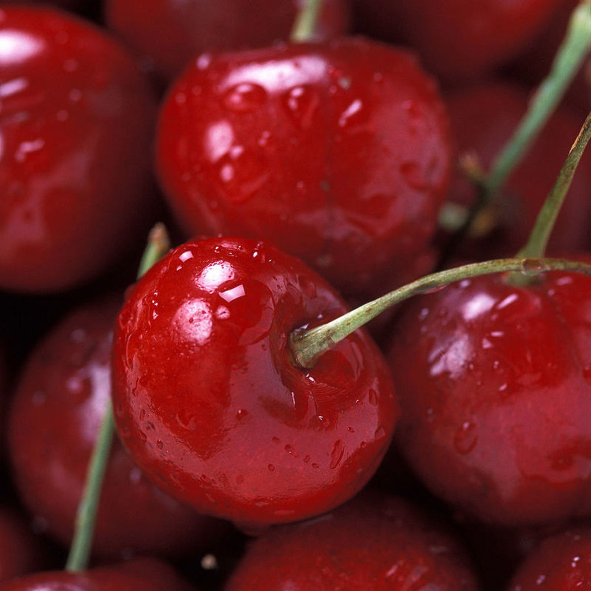 Washington's Cherry Tree Snack