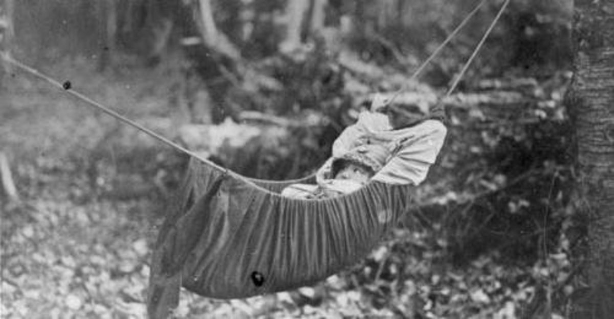 This is a Native American baby swing but the ones encountered by our unnamed poetess probably were made of birch bark and were more like suspended cradle boards.