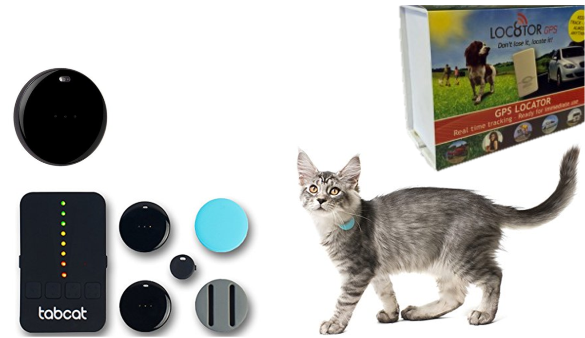 LOC8TOR GPS Pet Tracker