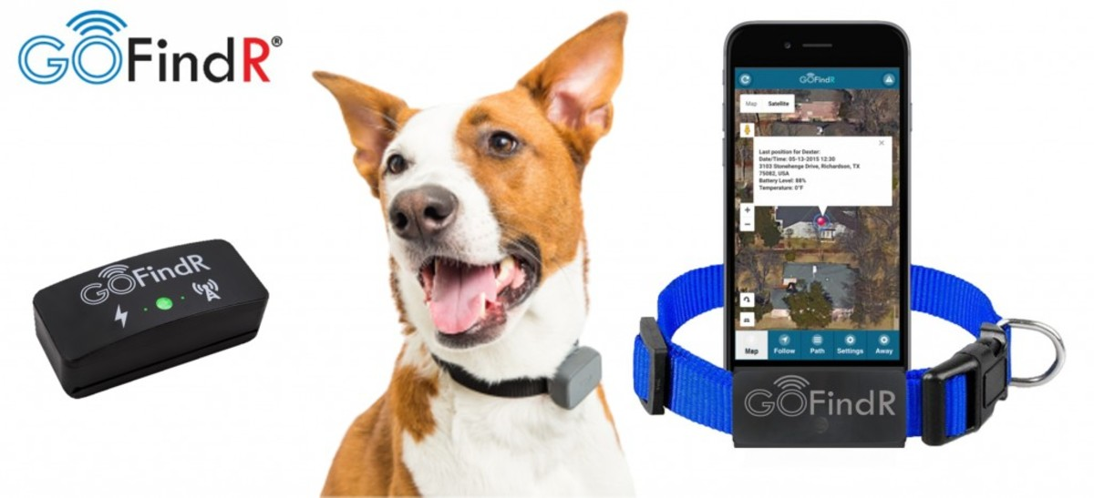 GoFind R GPS Pet Tracker