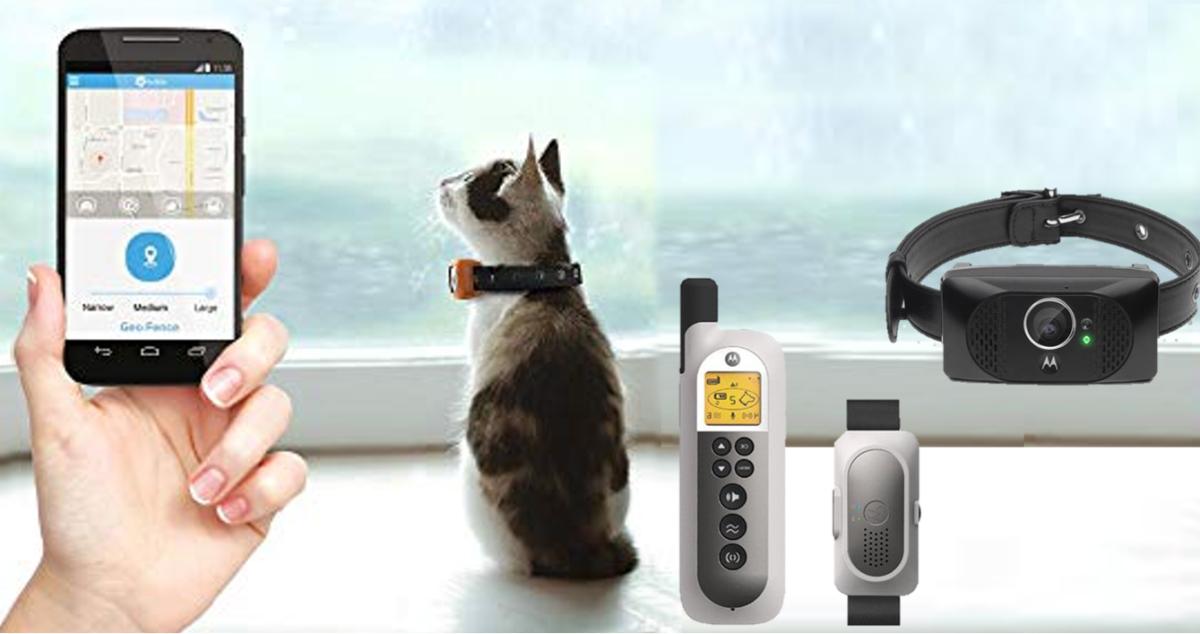 Motorola Scout Pet Tracker