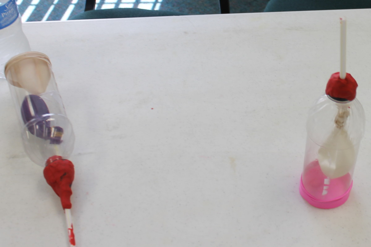 Lung models made from plastic bottles and balloons