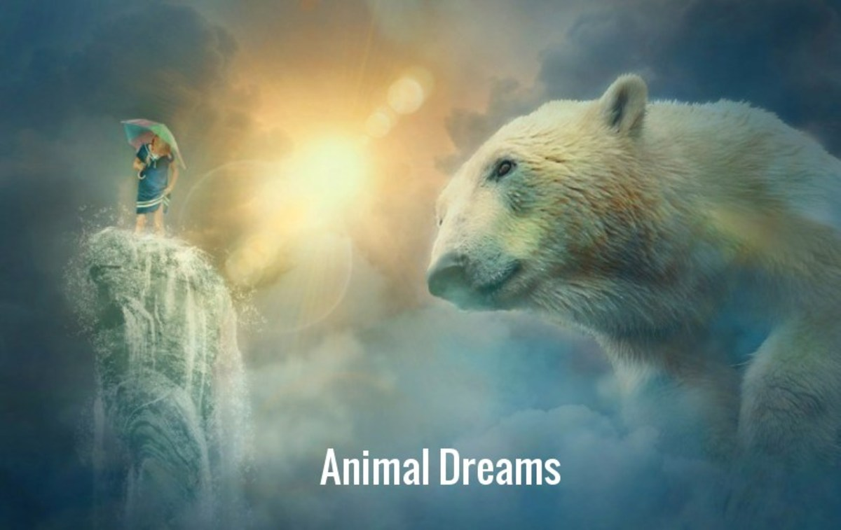 Dream your pet or familiar