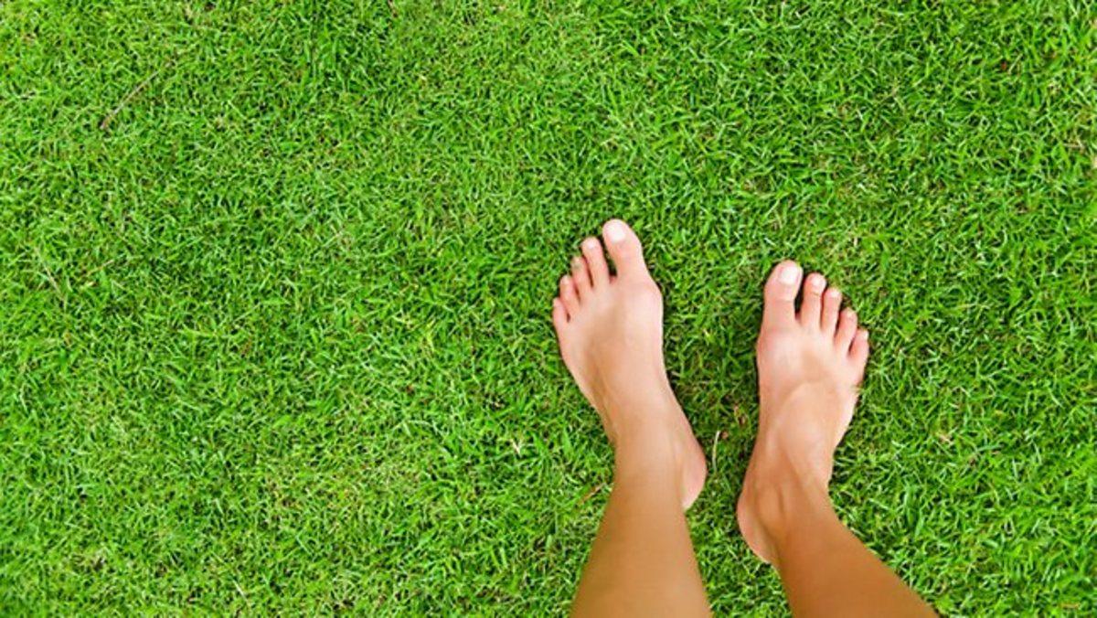 Benefit of Walking Barefoot in Wet Grass