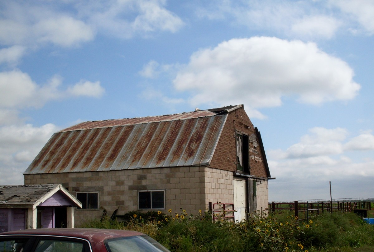The barn in question is old, but still in use. We repaired the roof in the spring of 2009. This photo was taken prior to the repair.
