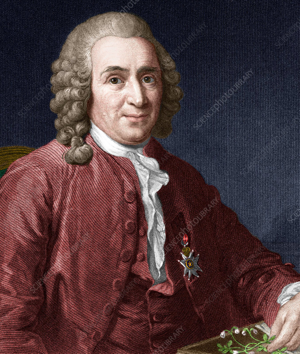 Carl Linnaeus, not only a great botanist but a pioneer in taxonomy, classification and the naming of new organisms