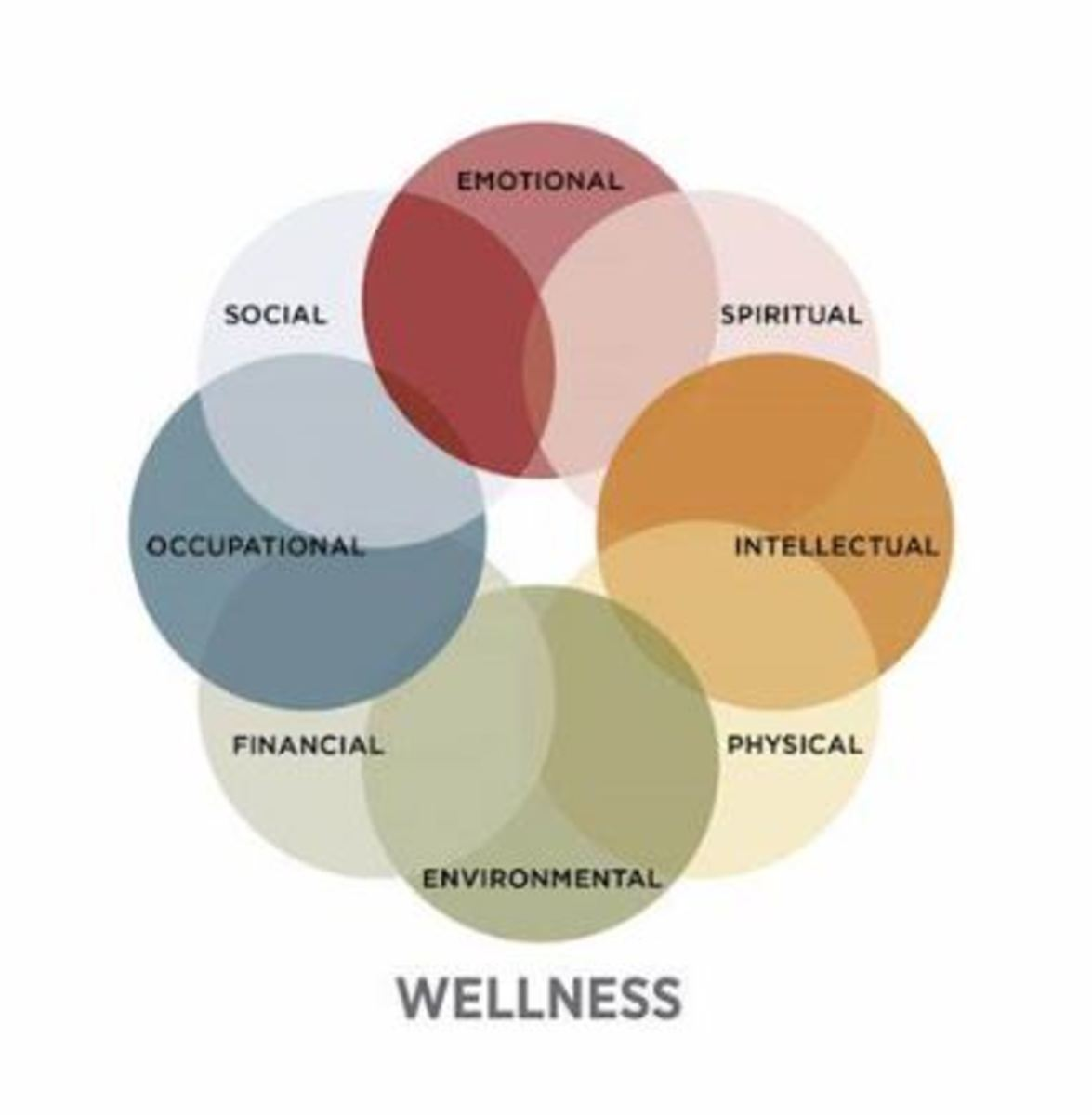 Your Wellness Wheel