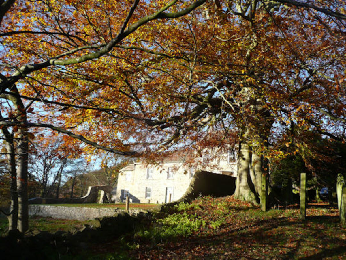 Autuimnal break at Marske in Swaledale - it's a good time to take this walk, the weather being more settled