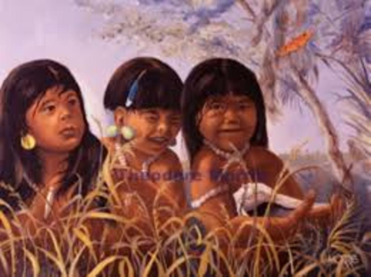 Florida Tequesta Native indians