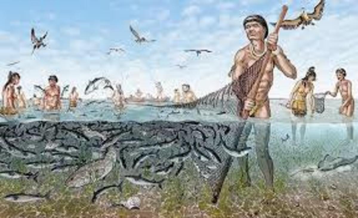 Florida Calusa Native Indians