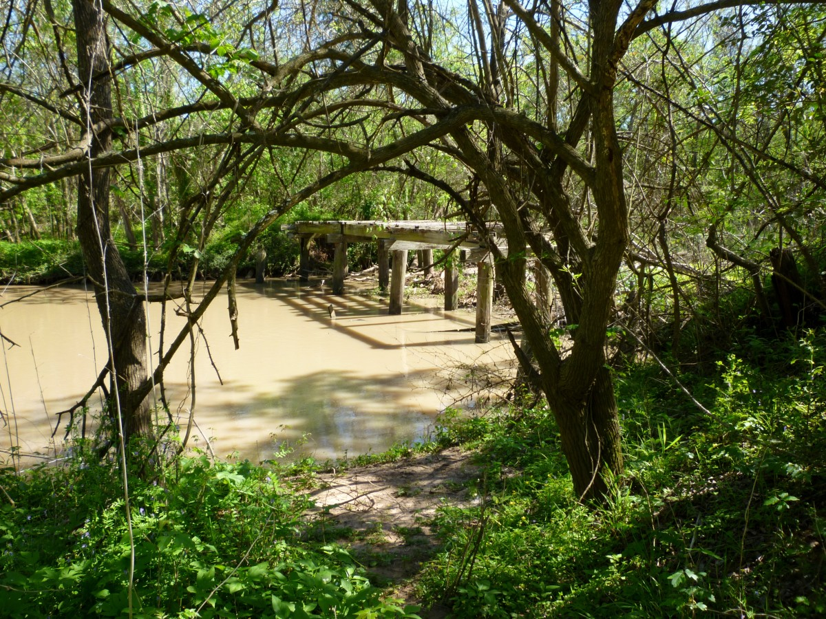 Oyster Creek  in Cullinan Park