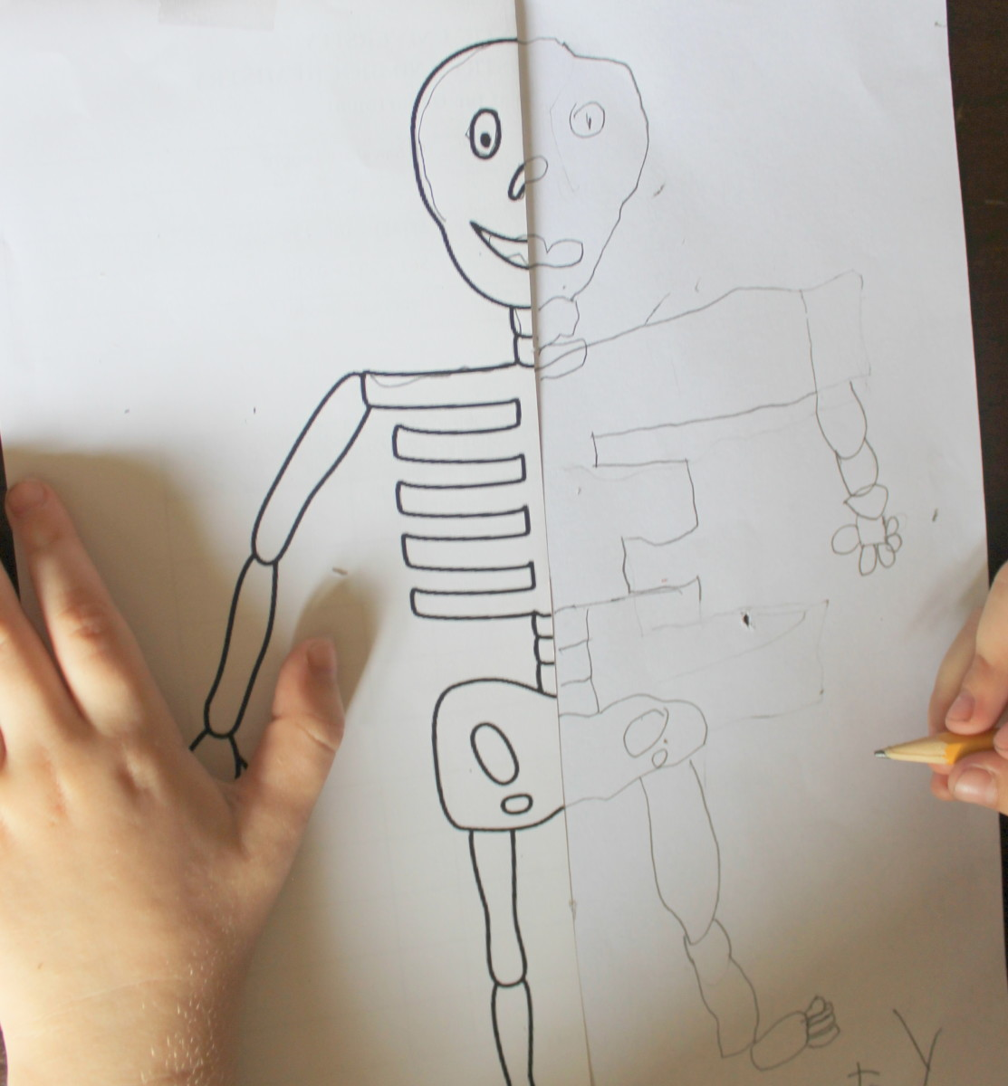 Mirror image sketch of a skeleton by a child who just turned 5