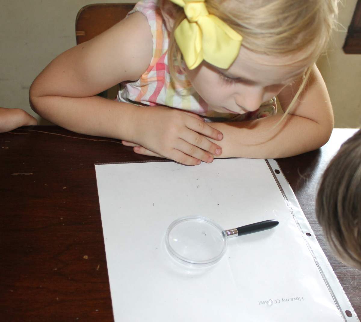 Water Drop Lens Science Activity