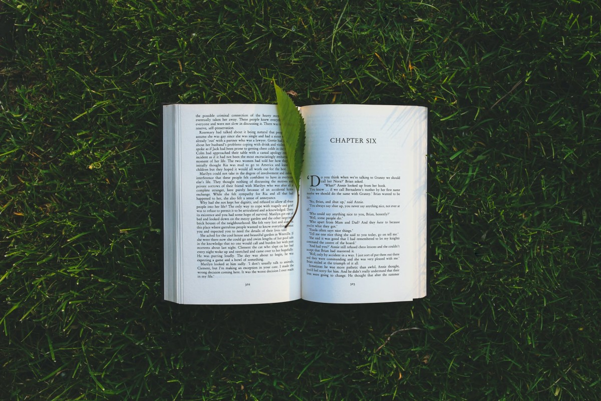 A Book Writing - a traditional way of writing and publishing