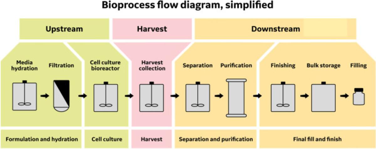 Bioprocess Flow Diagram
