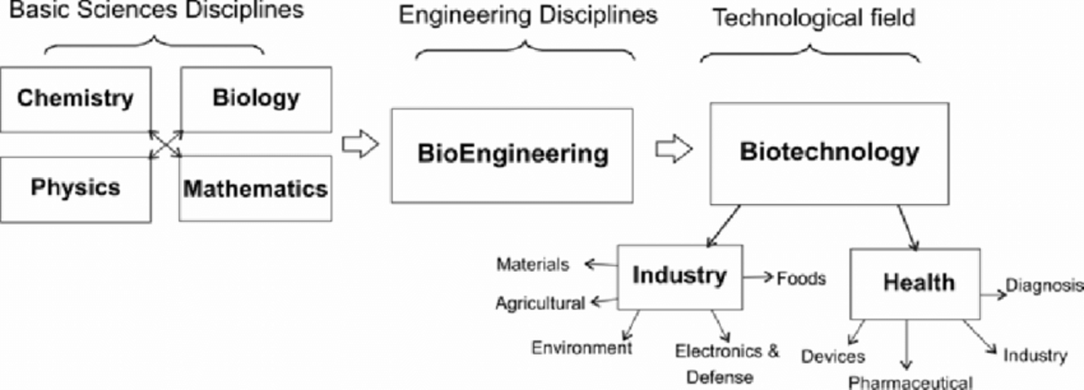 Biochemical Engineering-a multi-disciplinary field