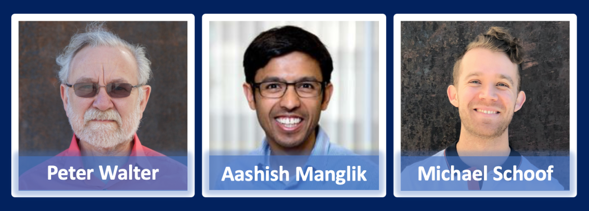 Peter Walter, Aashish Manglik, and Michael Schoof are the scientists behind the discovery of AeroNabs.