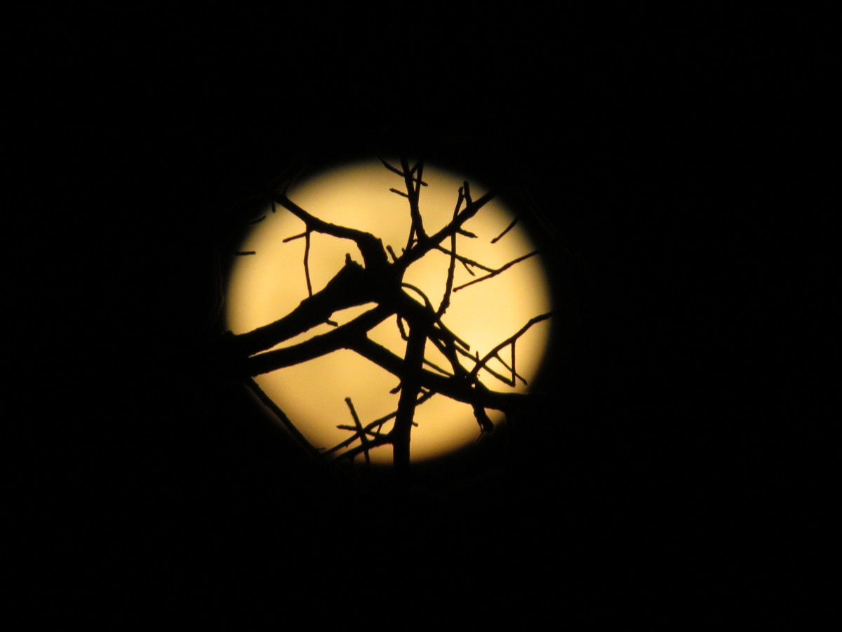 But there is two hard things- that is, to bring the moonlight into a chamber; for, you know, Pyramus and Thisby meet by moonlight Source: A MIDSUMMER NIGHT'S DREAM